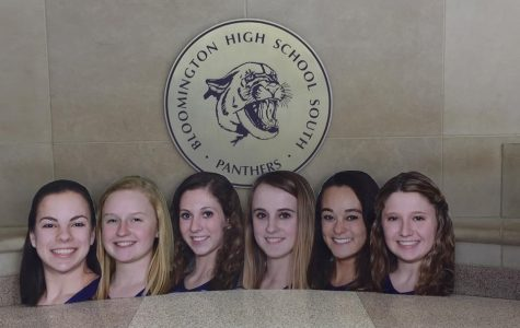 Gymnastics Team Goes to State