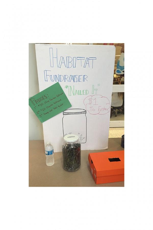 Habitat for Humanity fundraiser