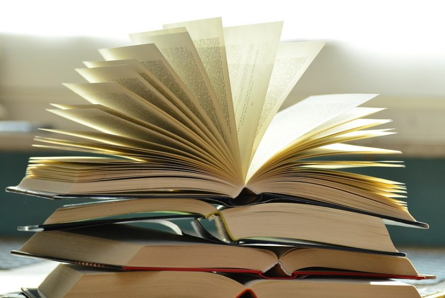 Your Bi-Weekly Rant: Reading
