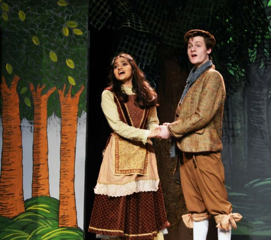 """South students tackle Sondheim in """"Into The Woods"""" production"""