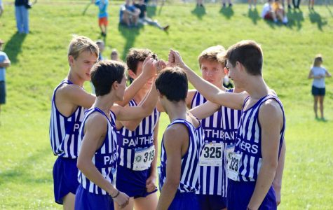 South boys, girls run to 2nd place finish at sectionals (gallery)