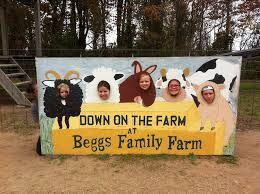 Begg%27s+Family+Farm+%28Flickr%29